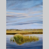 napeague-wetlands-40x30
