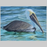 Wgovenour_pelican_9x13